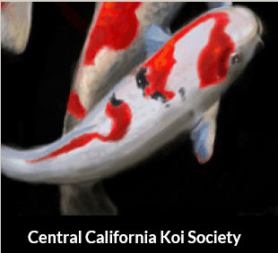 Central Cal Koi Society
